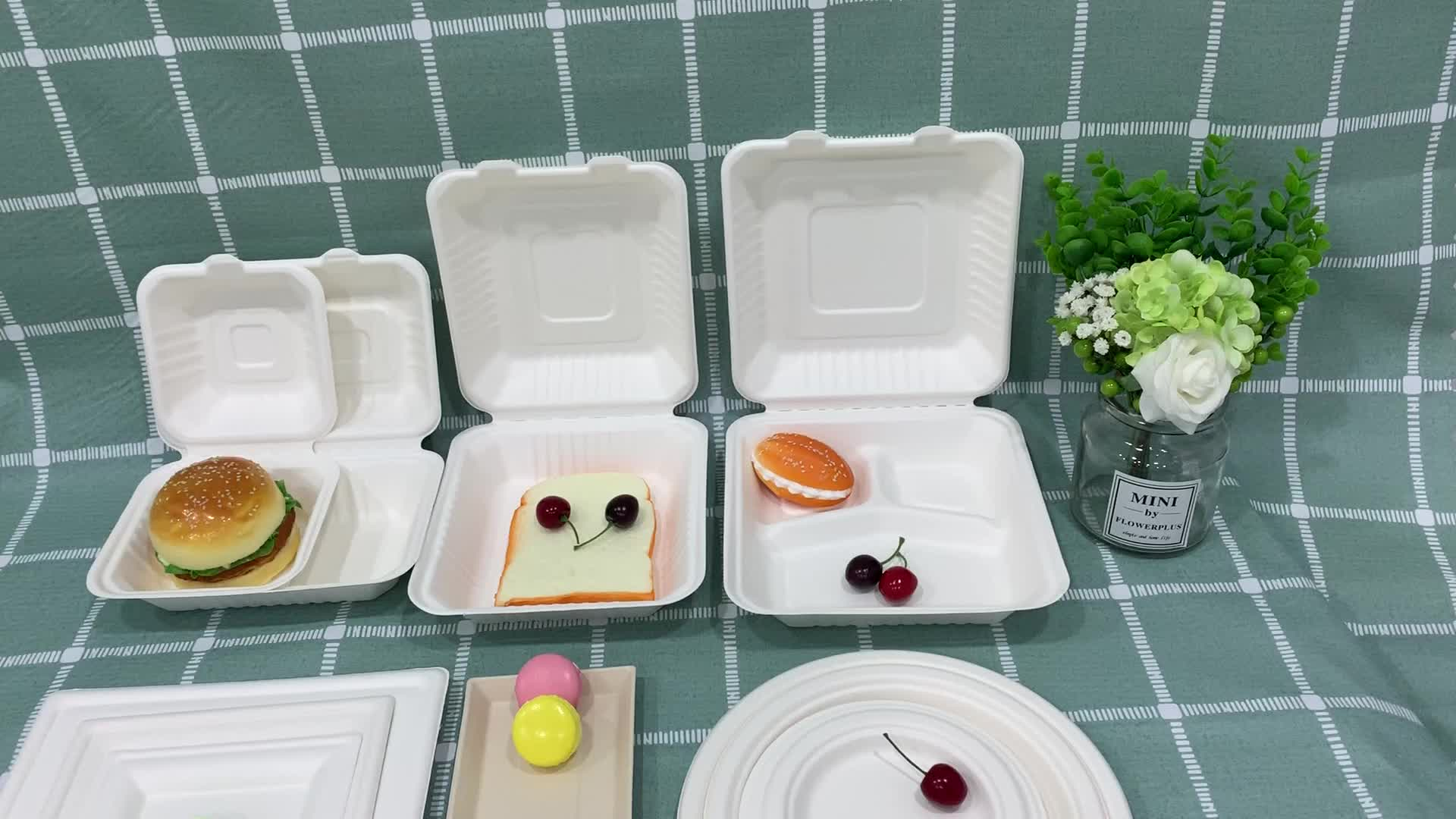 Eco-Friendly Bagasse sugarcane party ware disposable Biodegradable Paper Plates