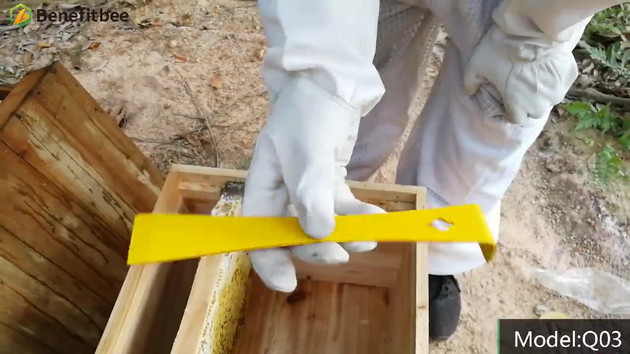 Beekeeping tool Bee Hive Tool Stainless Steel tools