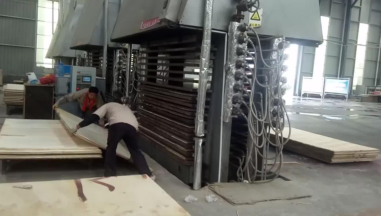 Multiplex Machine-hot persmachine made in Linyi