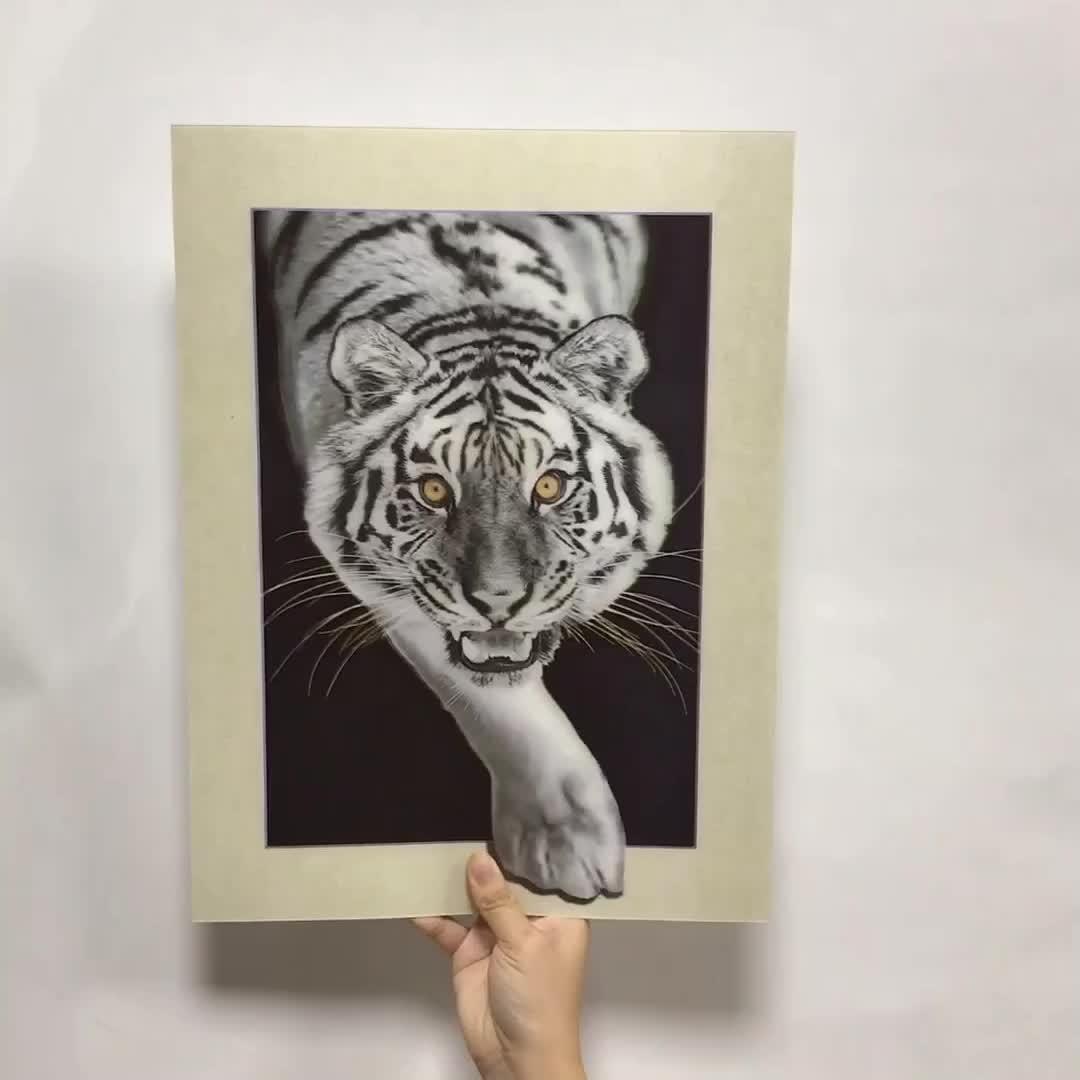 3D desgin lenticular art photo 5D Lenticular Picture สำหรับตกแต่งผนัง