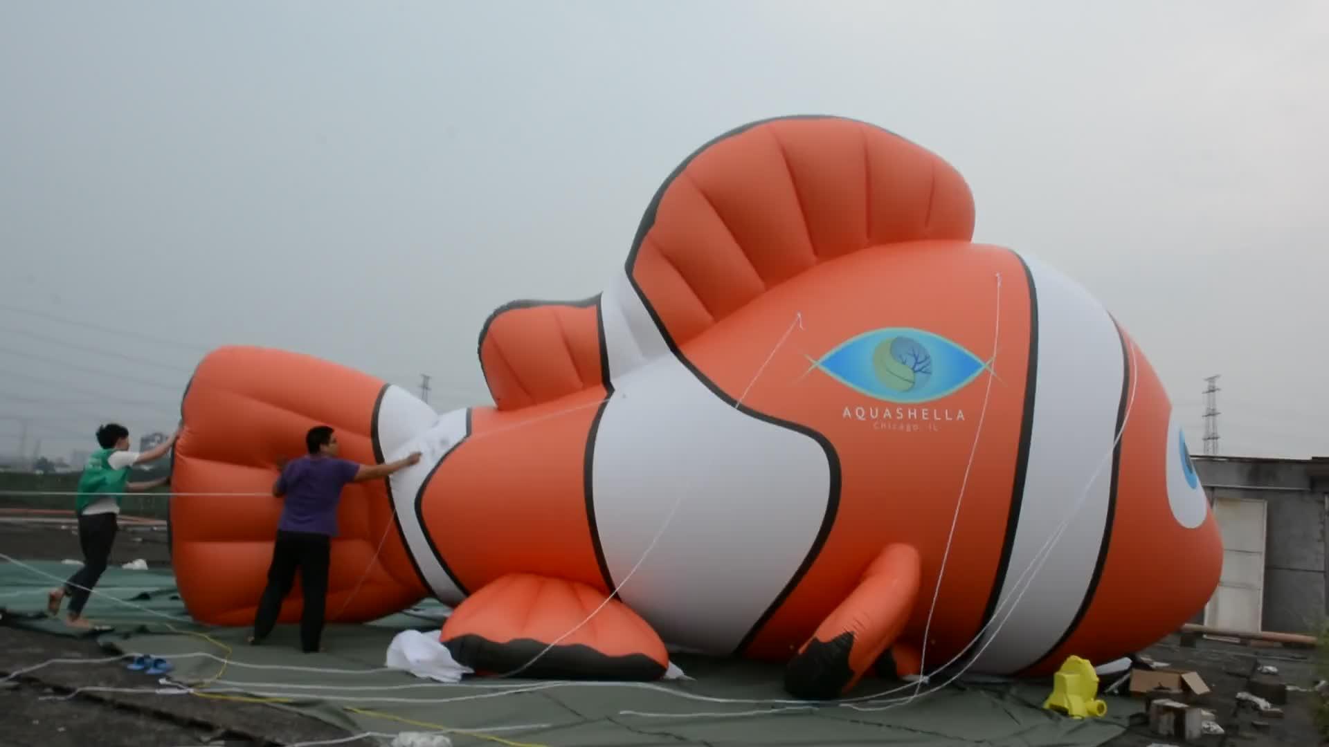 2016 New Design Lovely Hongyi PVC Vinyl Big Helium Goldfish Balloon , Giant Inflatable Fish