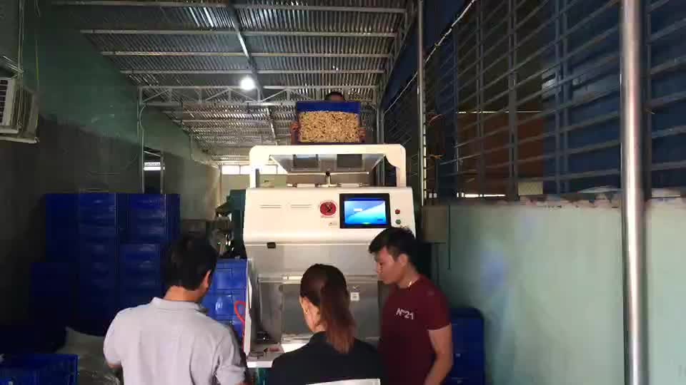 Hons New Design High Quality High Accuracy 2 Chutes Multi-Functional CCD Tea Color Sorter Machine Hot Sale