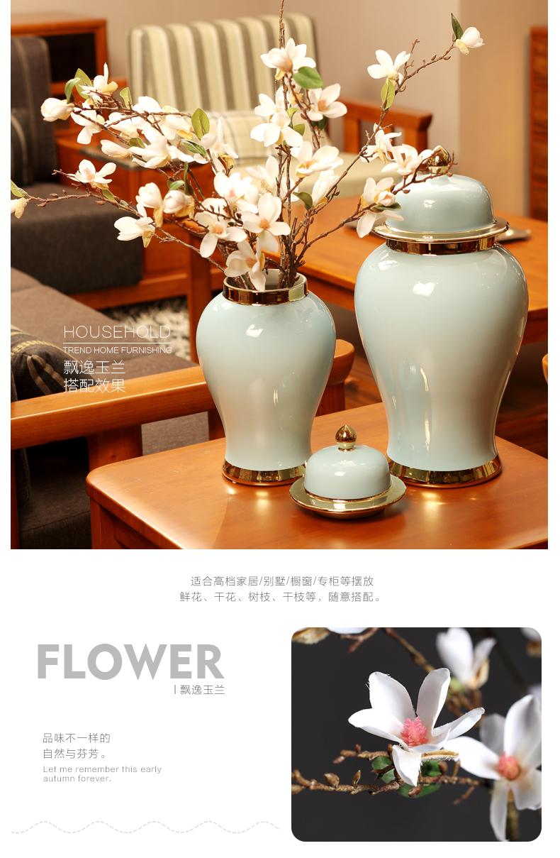 现代简约欧式陶瓷将军罐摆件创意客厅电视柜插花器家居装饰品摆设