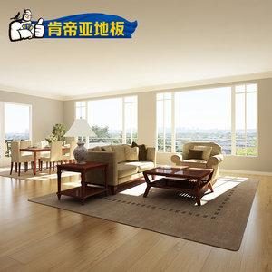 肯帝亚强化复合地板12mm防水耐磨复合地板厂家直销BS系列