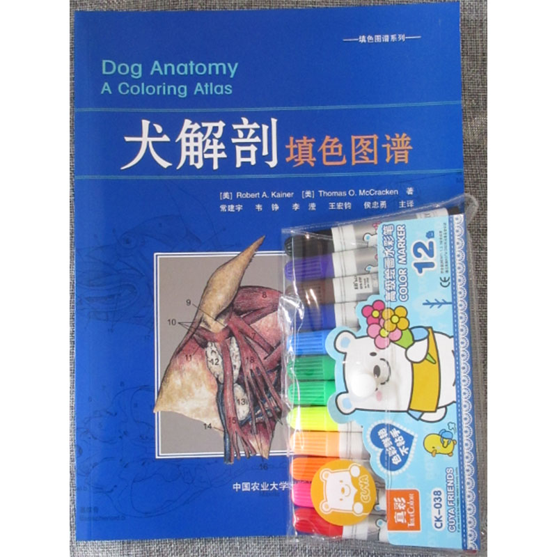 USD 31.12] (Gift color pen)Dog anatomy coloring map small animal ...