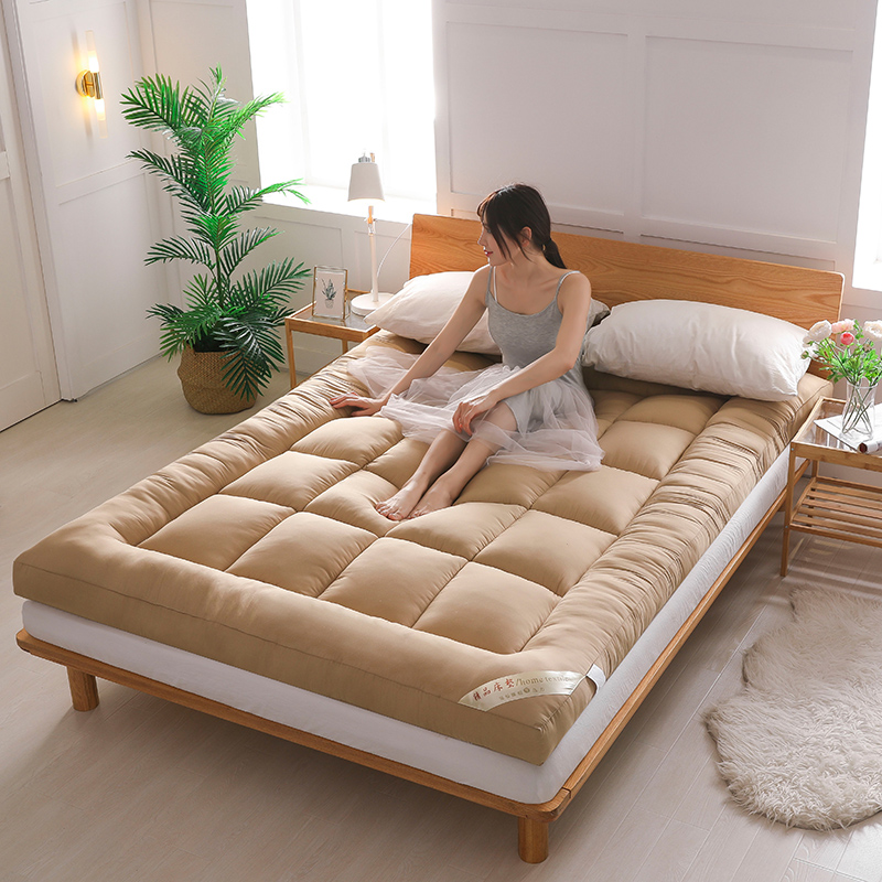 Buy Mattress thickened 10cm tatami foldable double 1.5m1 ...