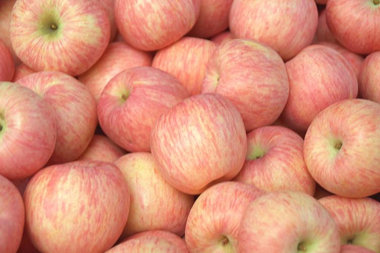 新鲜红富士农家孕妇好吃的精选 苹果脆 甜5斤包邮 坏果包赔