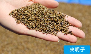 High quality 5 kg cassia