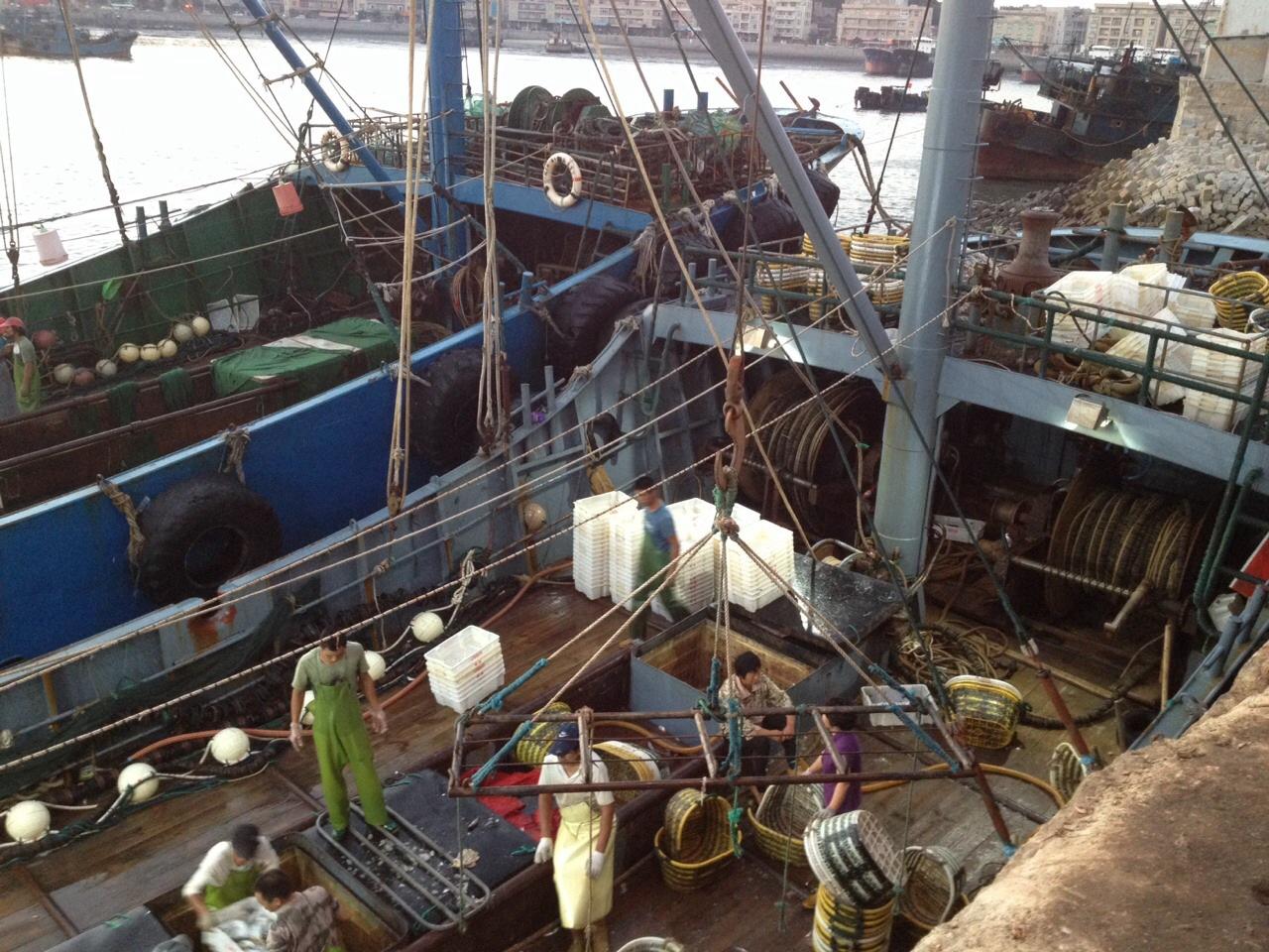 咸水拖鱼机 发电机拖网捕鱼机 盐水电鱼机  拖网机图片十