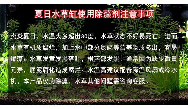 除黑毛藻去青苔清除剂除藻剂不伤鱼醛灭褐藻丝剋星鱼缸草缸绿水详细照片