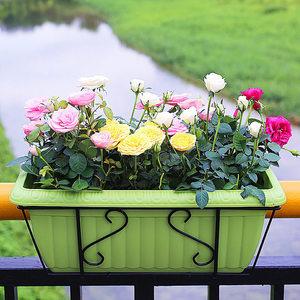 花架长方形花盆阳台护栏栏杆铁艺挂架挂式悬挂壁挂阳台种菜架子