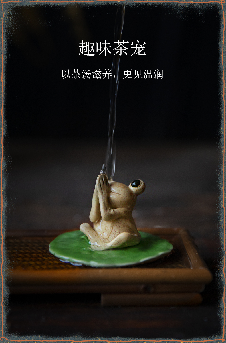 Buddha is the frog ceramic small place, lovely adornment ornament can raise tea pet tea sometimes don 't listen to watch don' t do it