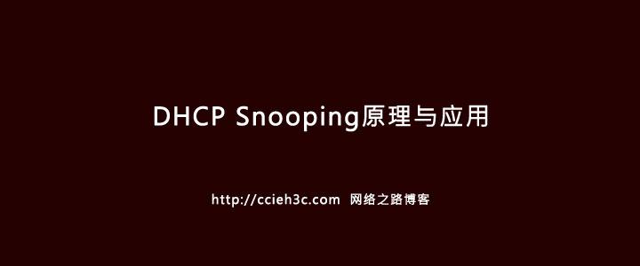 企业网安全防范系列之二:DHCP Snooping技术介绍