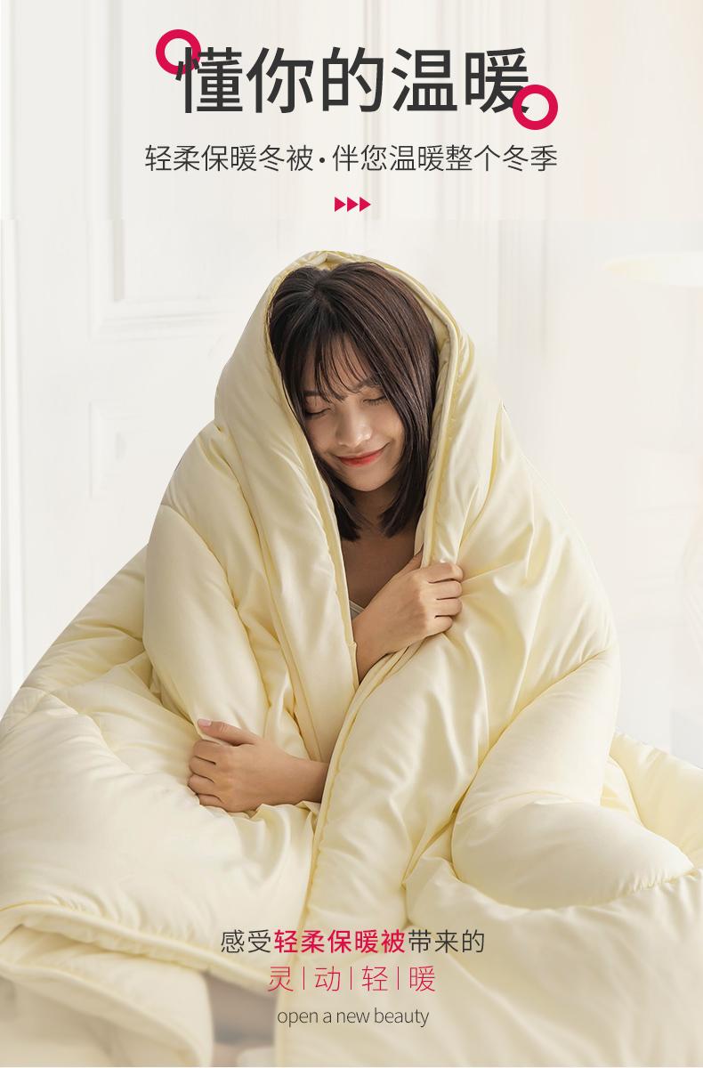 被子被芯四季通用春秋被双人空调夏单人学生宿舍棉被冬被加厚保暖详细照片