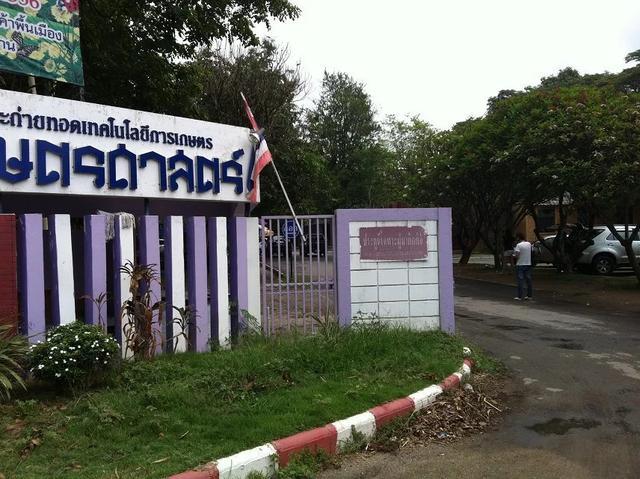网红泰国一所小清新的大学成为景点要购票哟