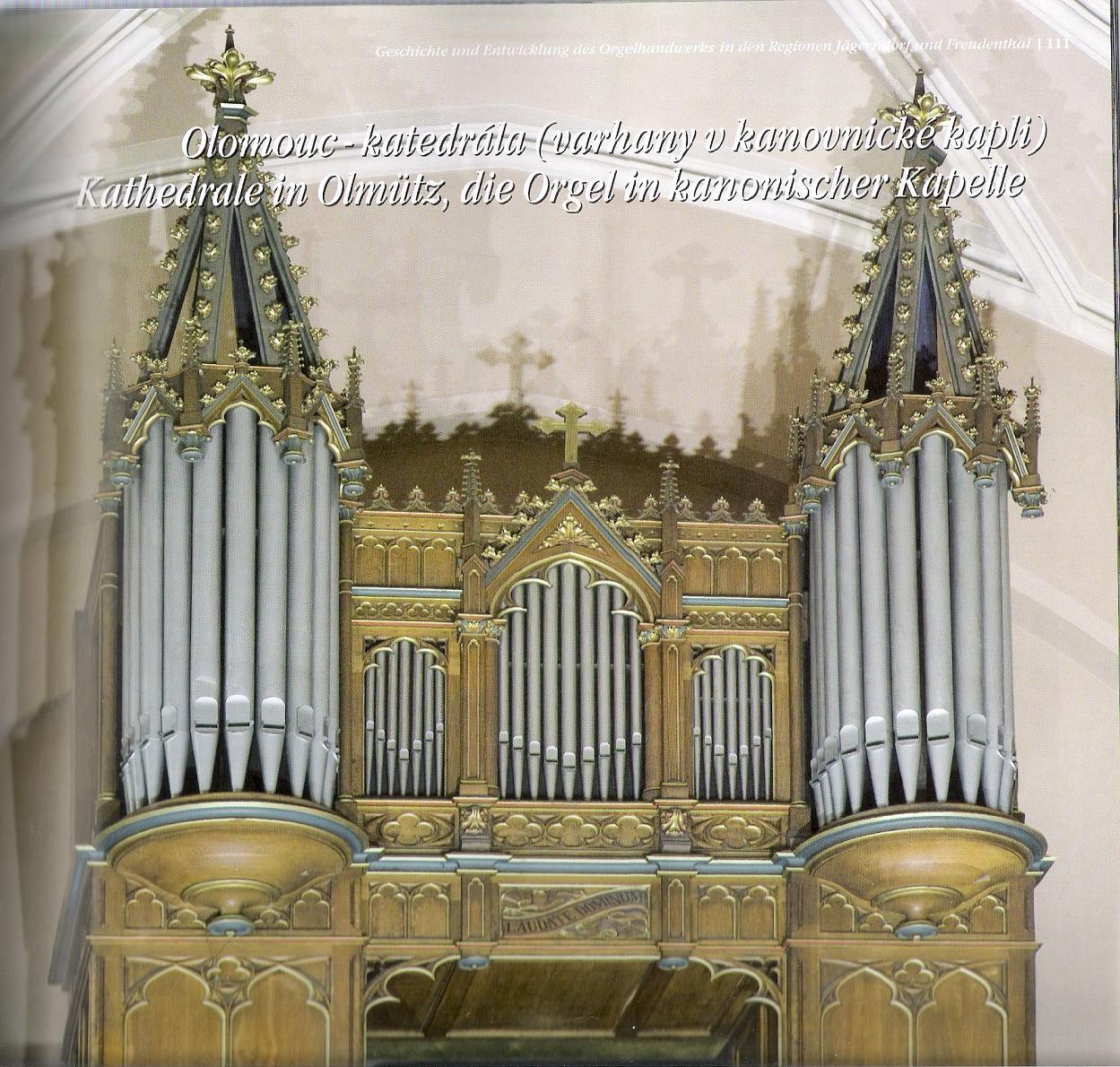 Трубка орган импорт заумный земля прибыль , чешский все виды стиль церковь трубка орган ( делать под заказ )