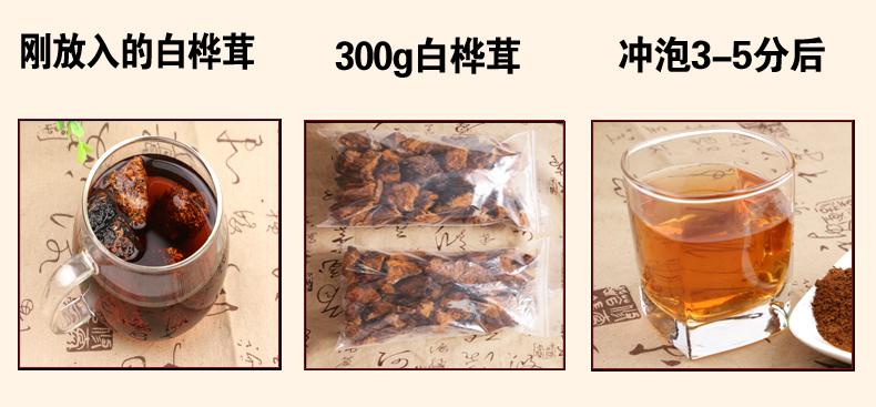 白桦茸012_12.jpg