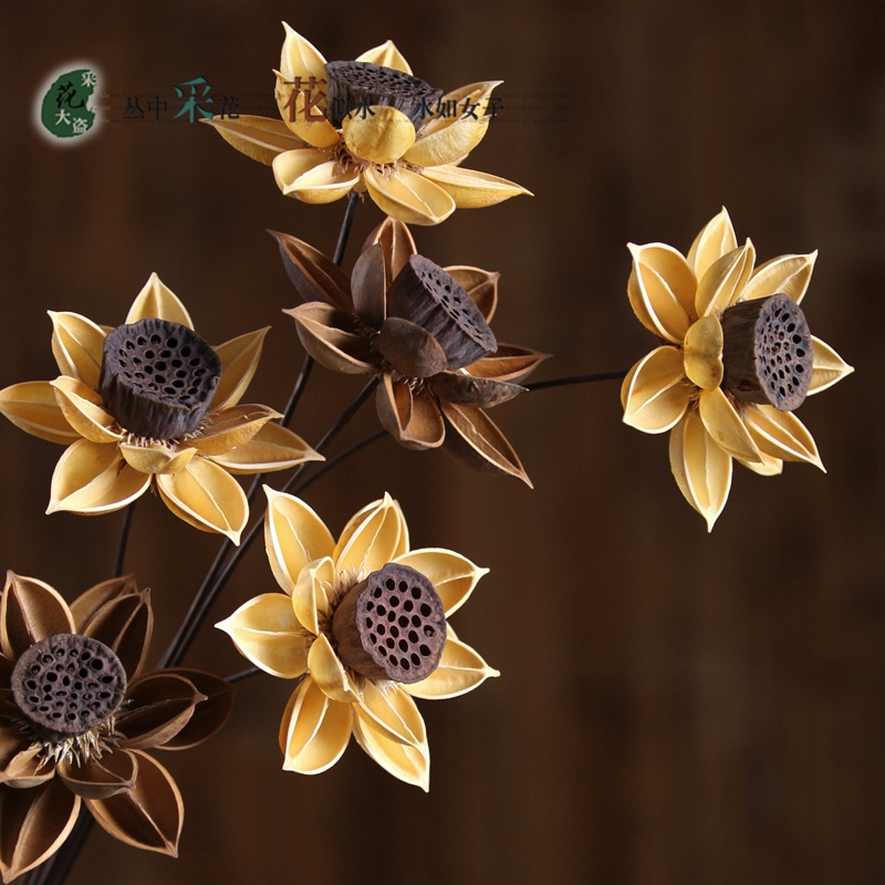 Usd 693 dried lotus dried flower bouquet dried lotus dried flower lightbox moreview lightbox moreview mightylinksfo