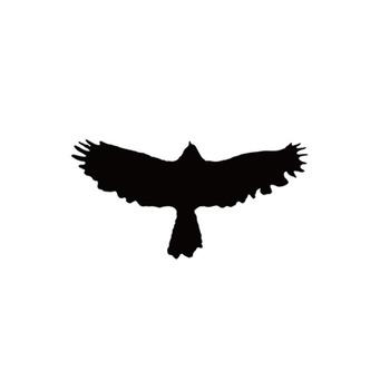 Фруктовый сок шип зеленый тату пирсинг шаблон T213 мужчина орел крылья половина постоянный моделирование печать зерна вышивать трафарет шаблон, цена 31 руб