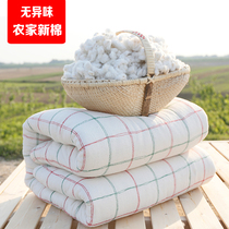 Quilts in winter, quilts in winter, warm cushions, quilts, cotton quilts, all cotton quilts, single and double air conditioning quilts in spring and autumn and summer