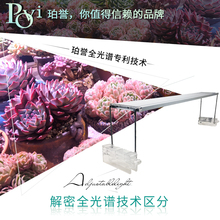 Perry LED full spectrum plant growth flowers fleshy anti-aging color fill lamp plate instead of lamp tube