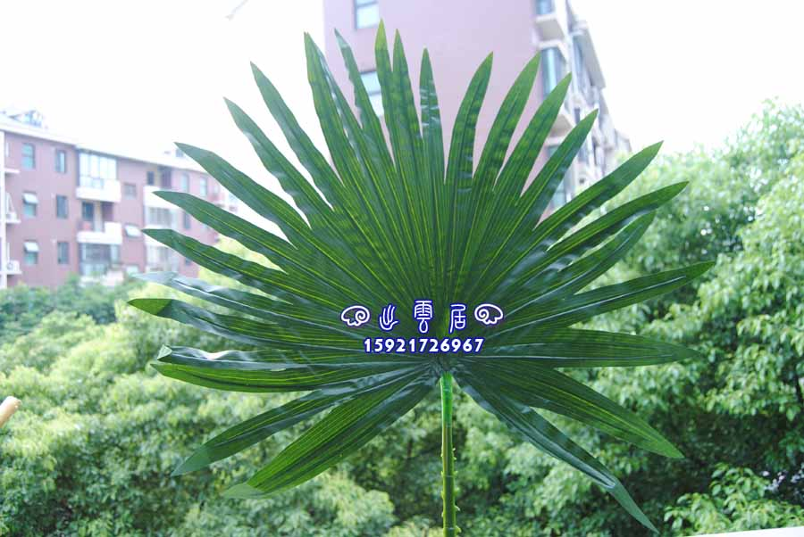 Usd 652 simulation palm leaves simulation coconut leaves dates simulation palm leaves simulation coconut leaves dates leaves wedding decoration leaves loose tailed leaves palm leaves junglespirit Image collections