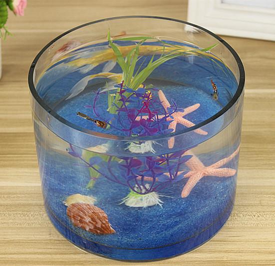 Creative Aquarium Ecological Round Glass Goldfish Cylinder Large