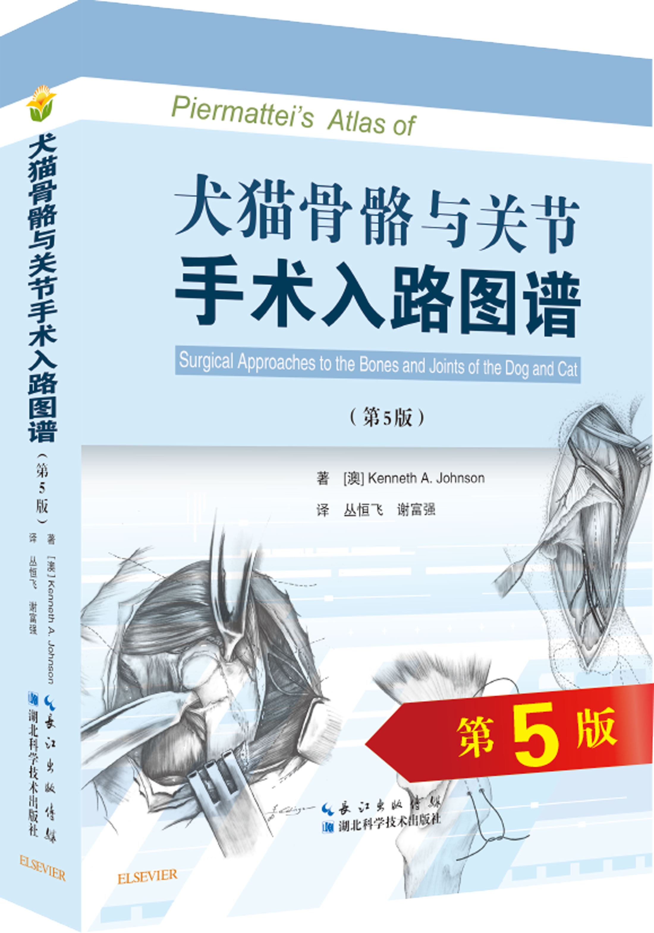 USD 55.71] Canine skeletal and articular surgical approach Atlas ...