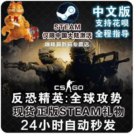 usd 8 85 steam pc chinese game counter strike global offensive cs