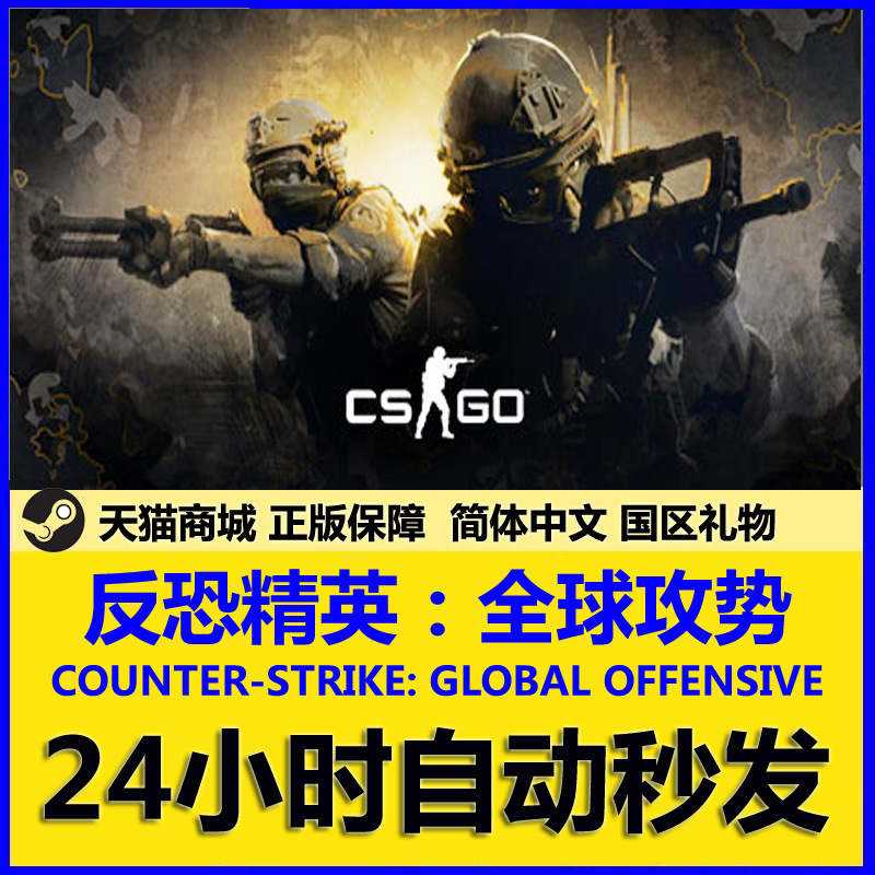 pc chinese steam genuine cs go csgo counter strike global offensive