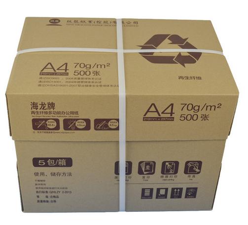 海龙环保A4纸A480G复印纸70/80克A4纸500张打印复印纸整箱包邮
