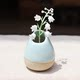 Jingdezhen Ceramic jewelry ornaments creative home gardening flowers into a vase trumpet treasurer recommended Genius