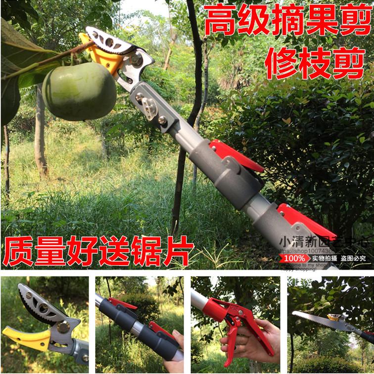 Импортные ножницы для резки фруктов высокая Пильные ножницы высокая Ножницы для сбора фруктов телескопические ножницы для сбора фруктов