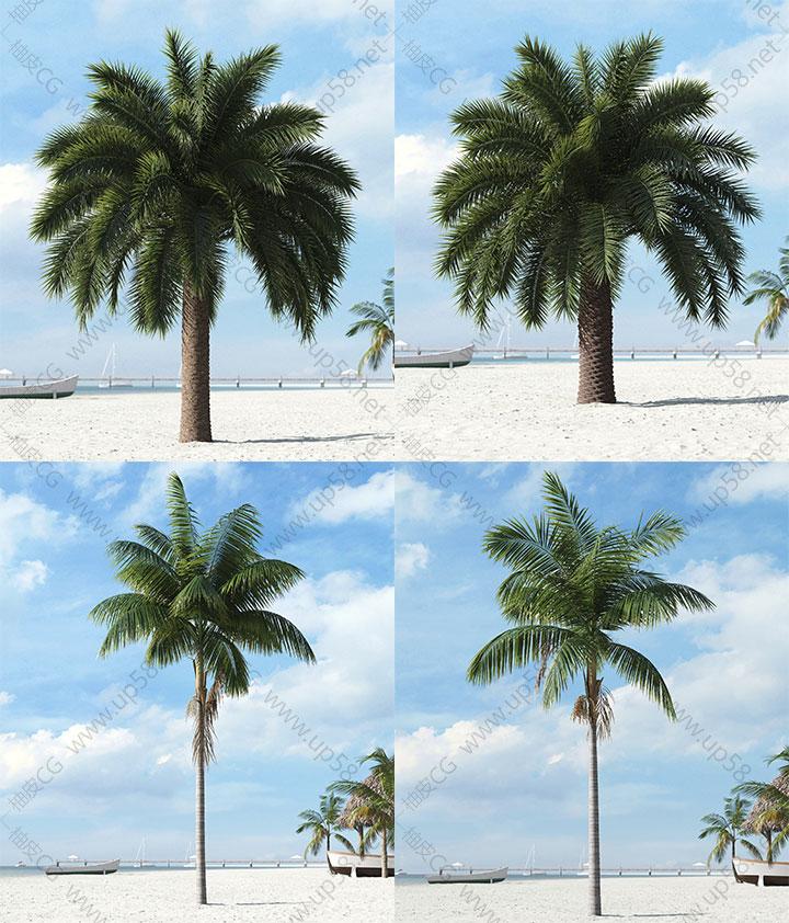 3dmax VRay室外景观设计棕榈树灌木植物高精度3D单体模型素材库