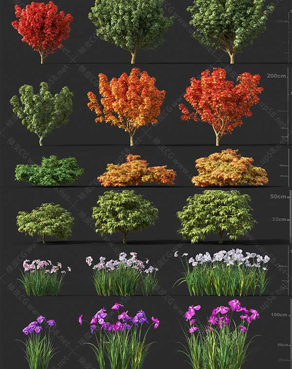 3DSMAX / VRay / Corona园林设计树木植物精细3D模型