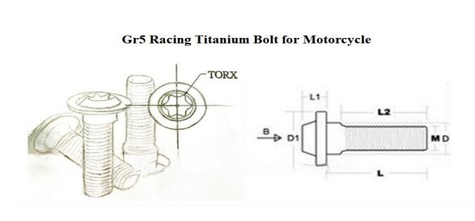 M6*20*1 0mm GR5 Ti titanium Ti6al4v Racing Titanium Bolt Motorcycle Blue  Anodized Bolts Motorcycle in stock good quality