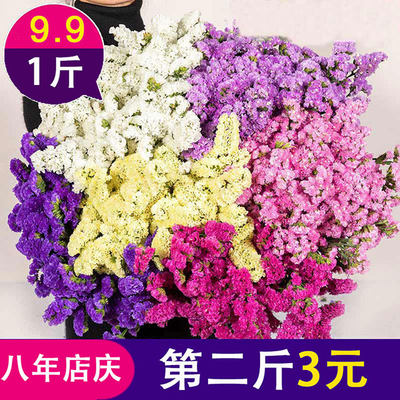 Yunnan natural forget-me-not dried flower bouquets
