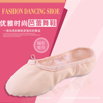Toddler Adult Dance shoes girl practicing canvas ballet shoes cat Claw Shoes