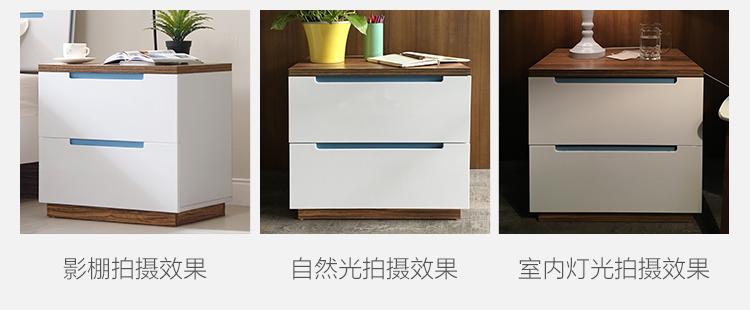 BI系列-蓝白-色差公版750.jpg