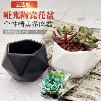 Baituji succulent small flower pot potted plant home desktop office gardening marble black and white ceramic flower pot