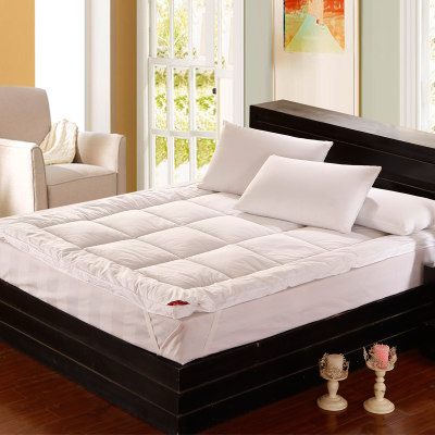 Feather velvet bed p...