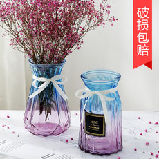Transparent glass vase dried flower arrangement water culture glass bottle living room creative small fresh decoration flower arrangement decorative flower pot
