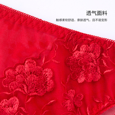 都市丽人组合内裤红品低腰蕾丝三角舒适女士内裤3条装2K8A10