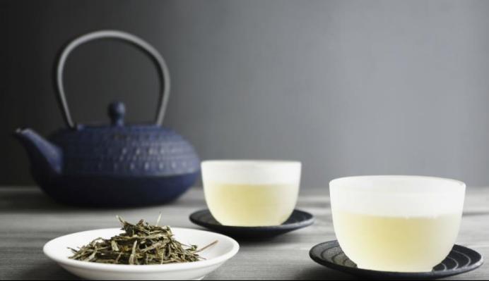 开启健康茶饮养生之道,茶叶你选对了吗?