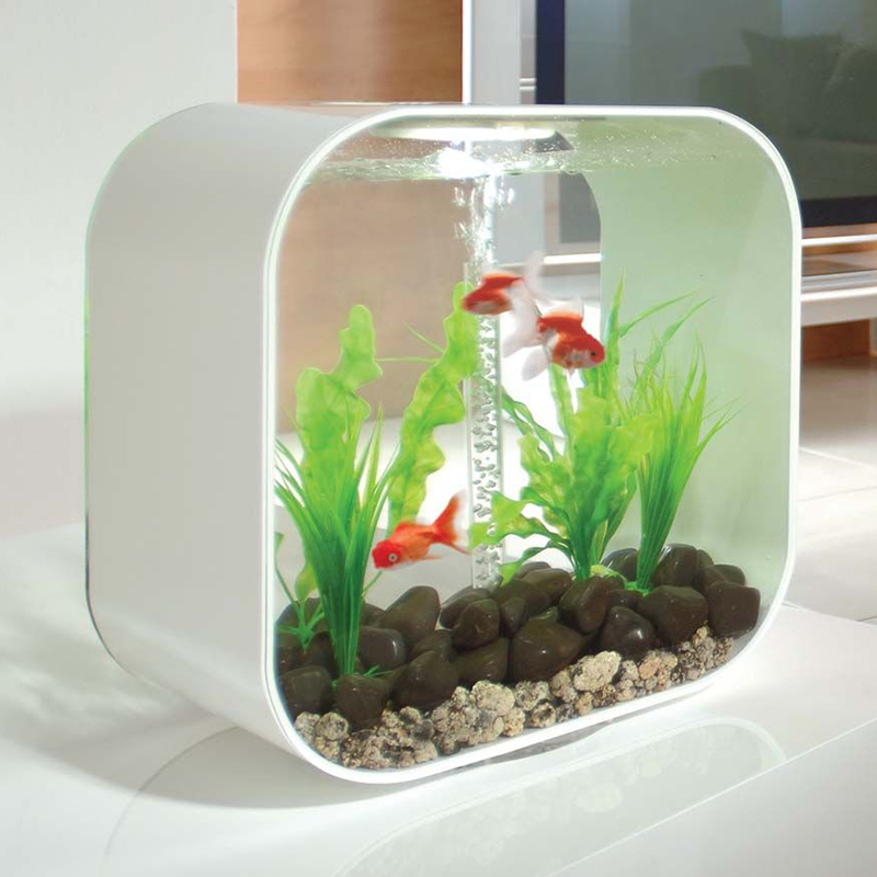 UK imports Lohas ecological fish tank 30L Home Office Creative Square  aquarium landscape