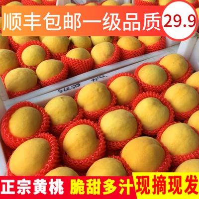当季蒙阴锦绣蜜桃新鲜红心带水果的黄桃油甜5斤包邮9-12个大果