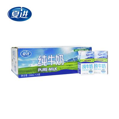【夏进】网红营养牛奶20盒*250ml