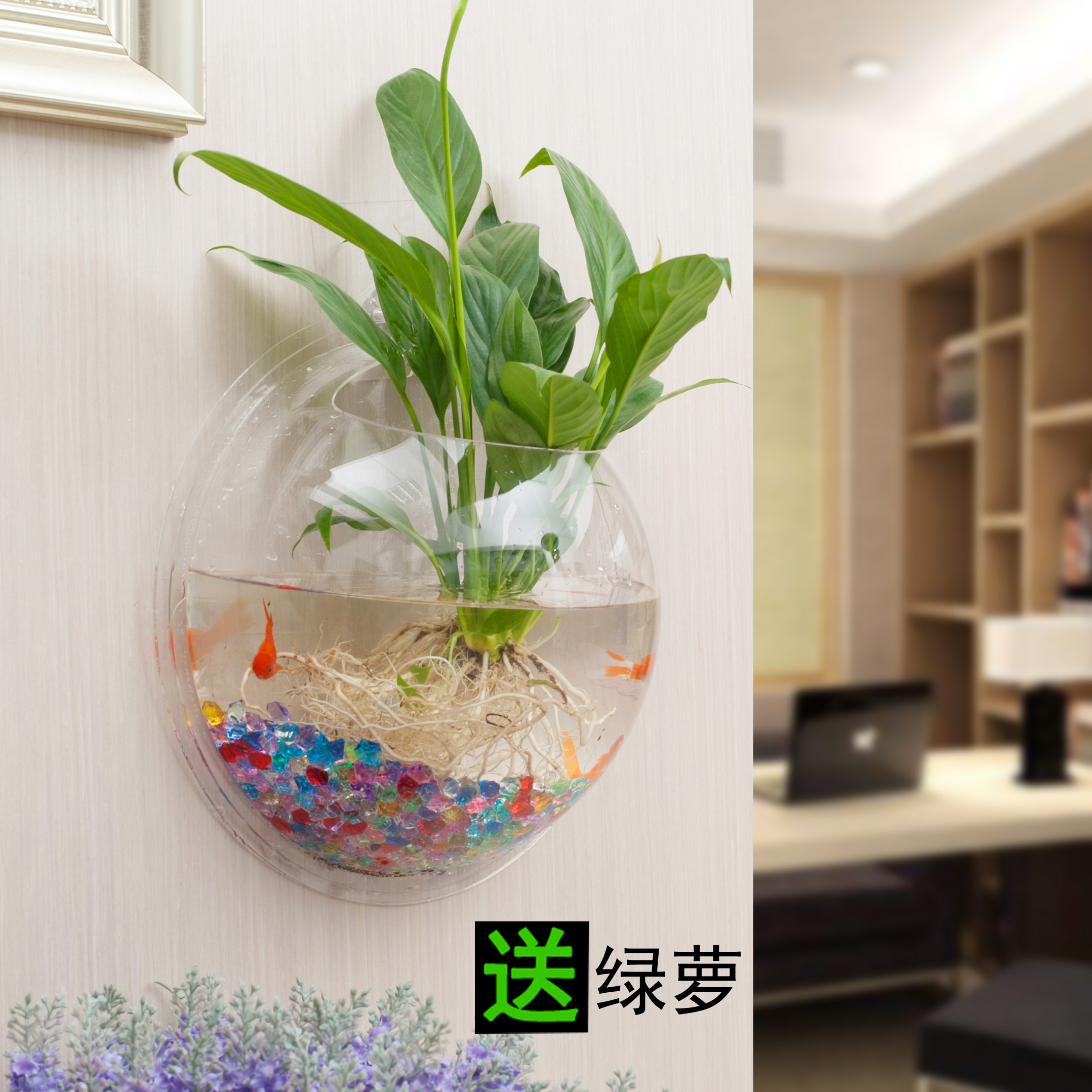 Wall Mounted Flower Pot Creative Green Plant Radish Potted Multi Fleshy