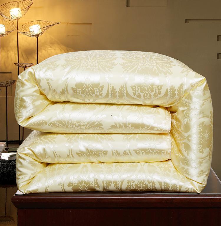 蚕丝被 100%桑蚕丝春秋冬被全棉被空调夏凉被单双人六8斤加厚保暖