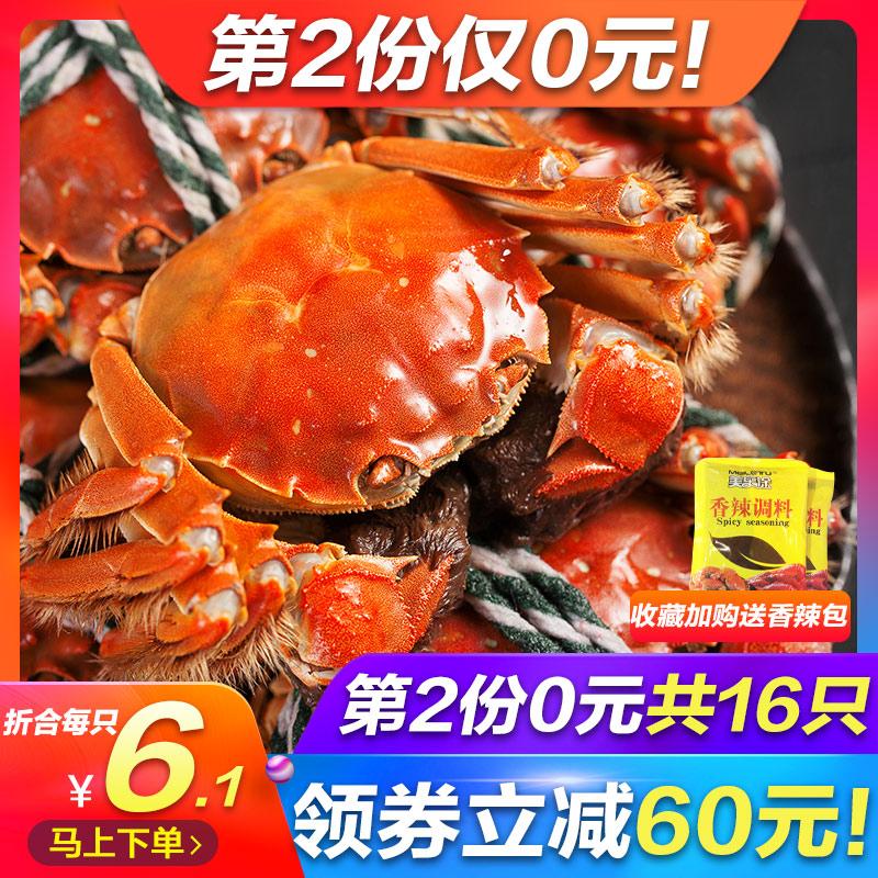 【第2份0元】鲜活螃蟹现货大闸蟹公蟹公母蟹随机大小河蟹礼盒装